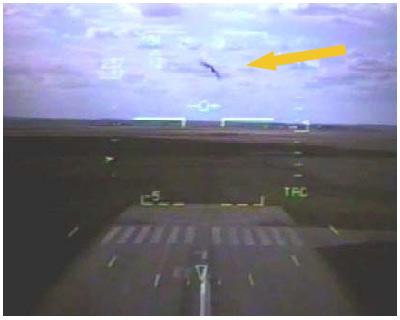 oiseau arrivant droit sur l'avion de chasse