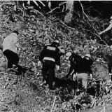 PSA vol 1771 – Crash provoqué par un steward suicidaire